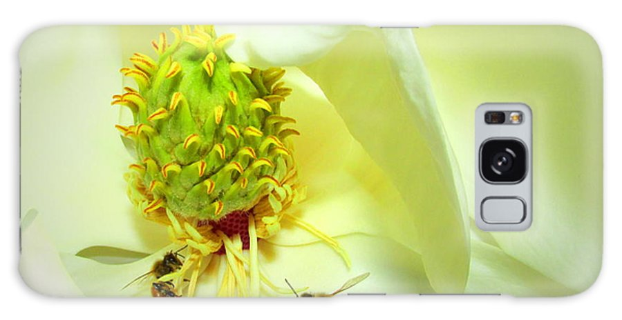 Honey-bees Galaxy S8 Case featuring the photograph Honey Bees And Magnolia II by Joyce Dickens