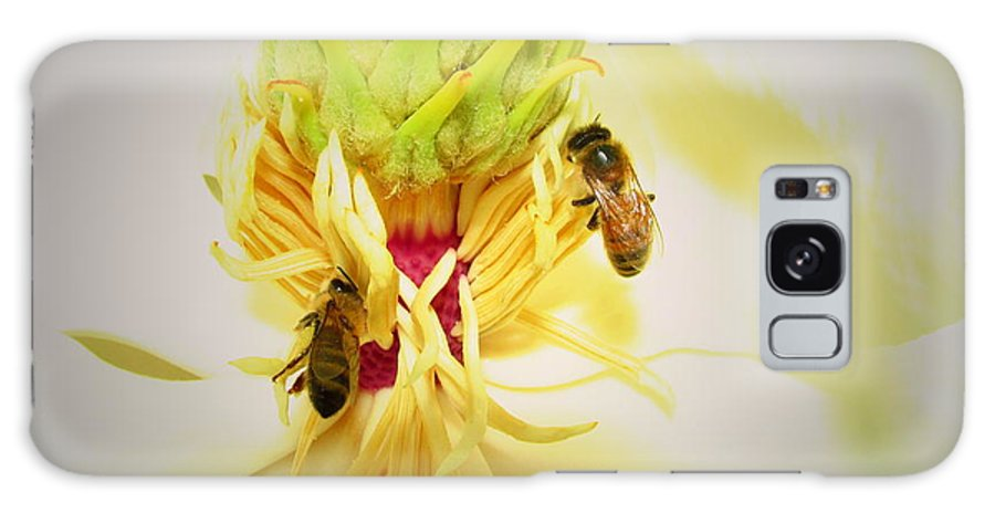 Honey-bees Galaxy S8 Case featuring the photograph Honey Bees And Magnolia by Joyce Dickens