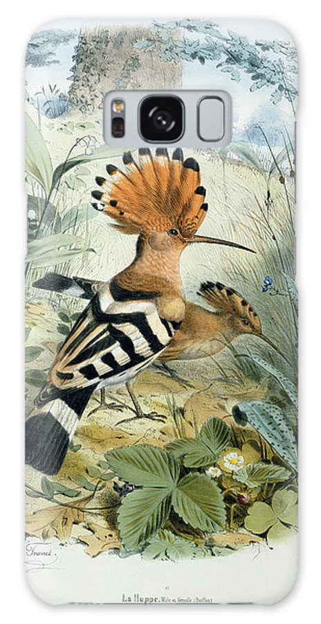Hoopoe (upupa Epops) (colour Litho) By Edouard Travies (1809-c.1865) Galaxy S8 Case featuring the painting Hoopoe by Edouard Travies