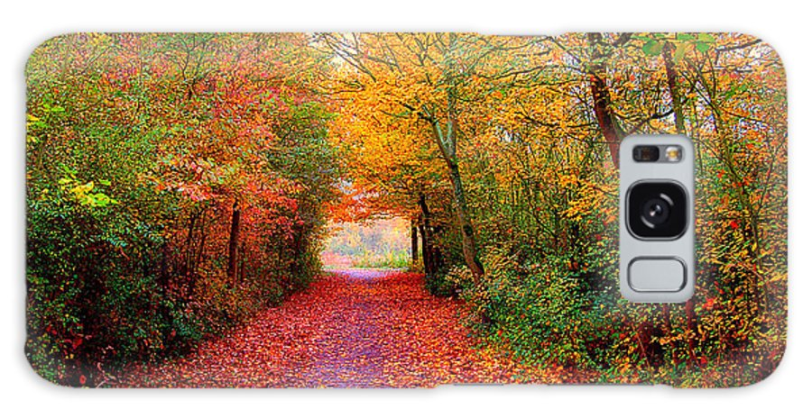 Autumn Galaxy Case featuring the photograph Hope by Jacky Gerritsen