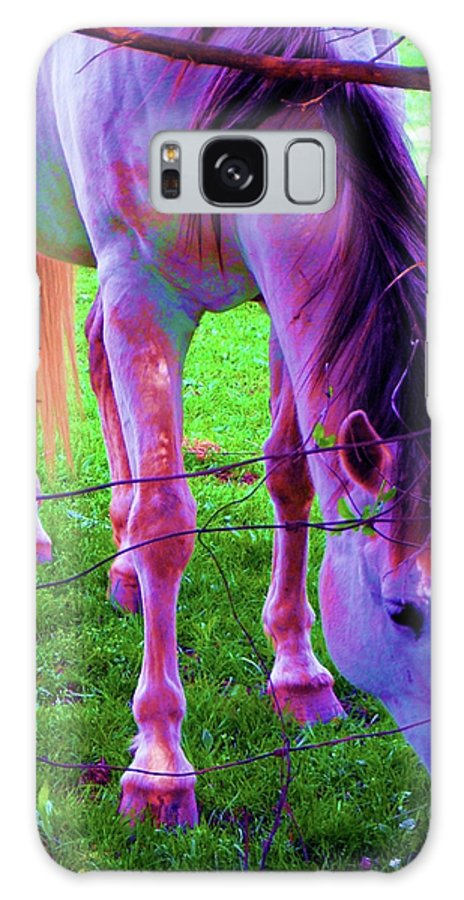 Horse Galaxy S8 Case featuring the photograph Horse Of A Different Color by Susan Carella