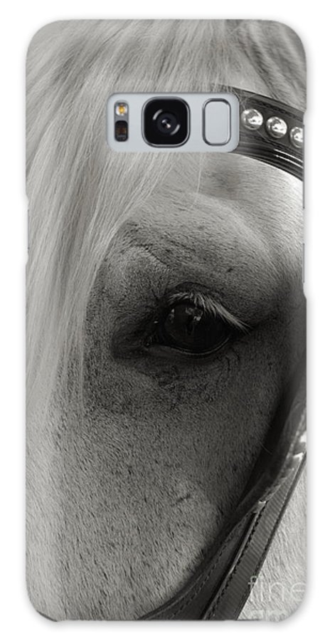 Horse Galaxy S8 Case featuring the photograph Horse Patience by Kathi Shotwell