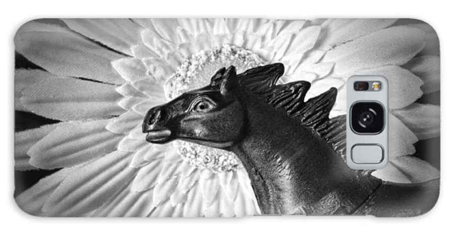 Horse Galaxy S8 Case featuring the photograph Horse Startled By A Daisy by Jeff Gettis