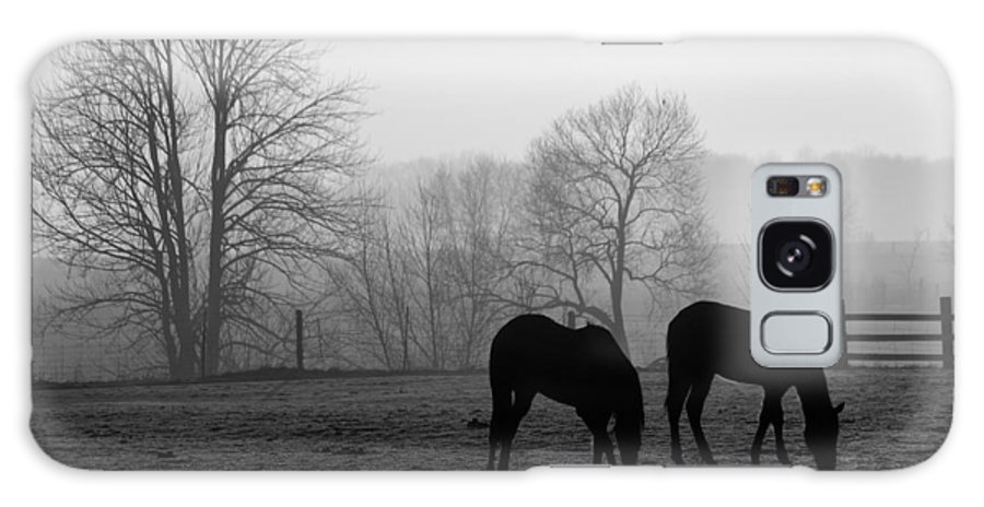 Horse Galaxy Case featuring the photograph Horses In Field B And W by Steve Somerville