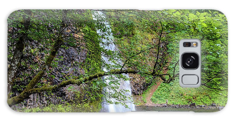 Waterfall Galaxy S8 Case featuring the photograph Horsetail Falls, Oregon by Aashish Vaidya