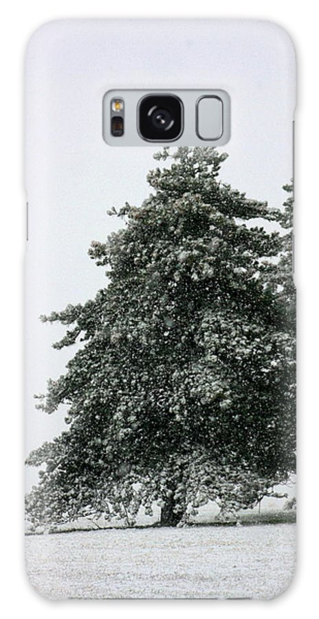 Frost Galaxy S8 Case featuring the photograph How Picturesque by David Dunham