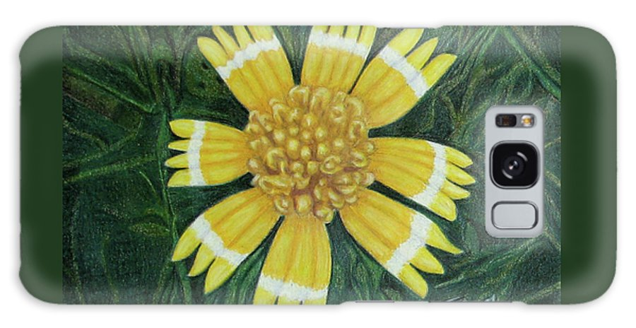 Fuqua - Artwork Galaxy S8 Case featuring the drawing Huisache Daisy by Beverly Fuqua