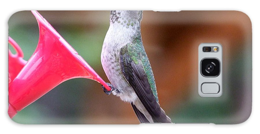 Green Galaxy S8 Case featuring the photograph Hummingbird 1 by Mary Deal