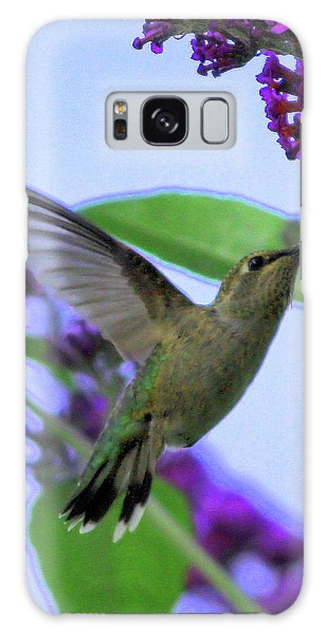 Hummingbird Galaxy S8 Case featuring the photograph Hummingbird In Butterfly Bush by Carol Groenen