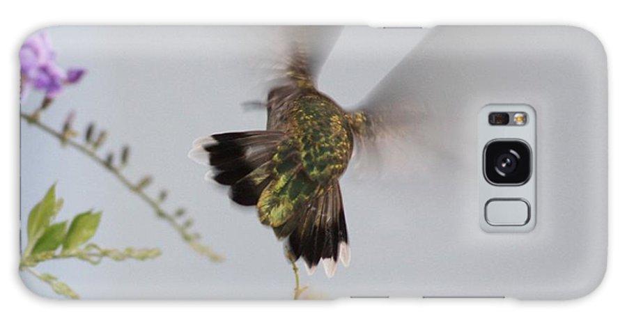 Digital Art Galaxy S8 Case featuring the photograph Hummingbird Wings by Carol Groenen