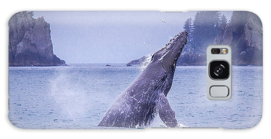 Humpback Whale Galaxy S8 Case featuring the photograph Humpback Whale Breaching by Elizabeth Ann