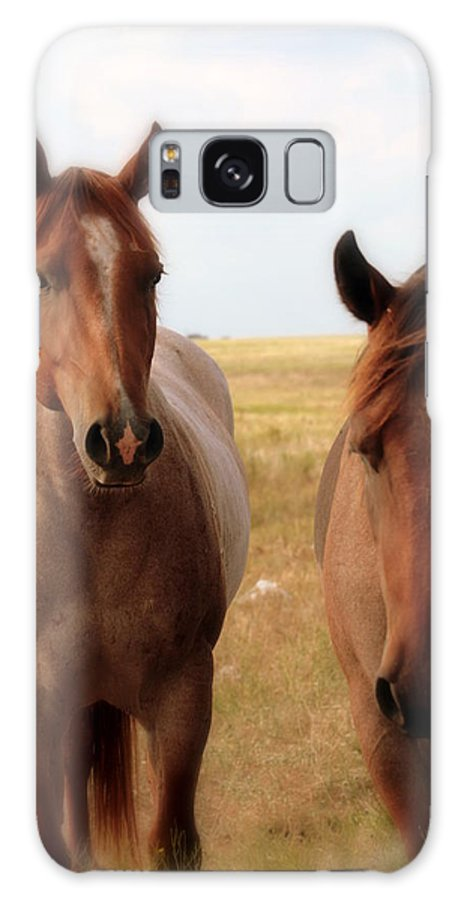 Horse Galaxy S8 Case featuring the photograph Hushed by Elizabeth Hart