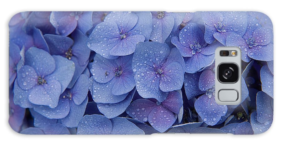 Flowers Galaxy S8 Case featuring the photograph Hydrangea Flowers by Jerry McElroy