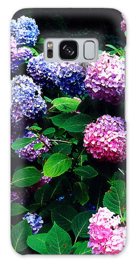 Flowers Galaxy Case featuring the photograph Hydrangeas by Nancy Mueller