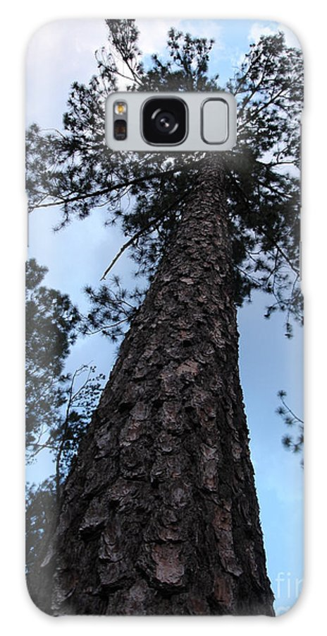 Tree Galaxy S8 Case featuring the photograph I Can Touch The Sky.... Can You by Shelley Jones