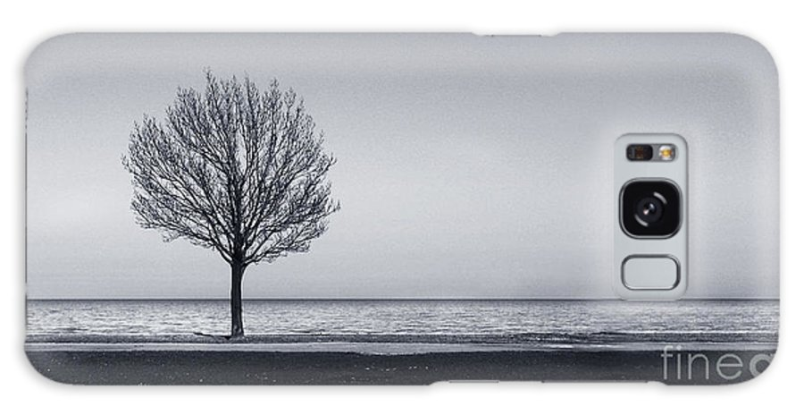 Tree Galaxy S8 Case featuring the photograph I Didnt Hear You Leaving by Dana DiPasquale