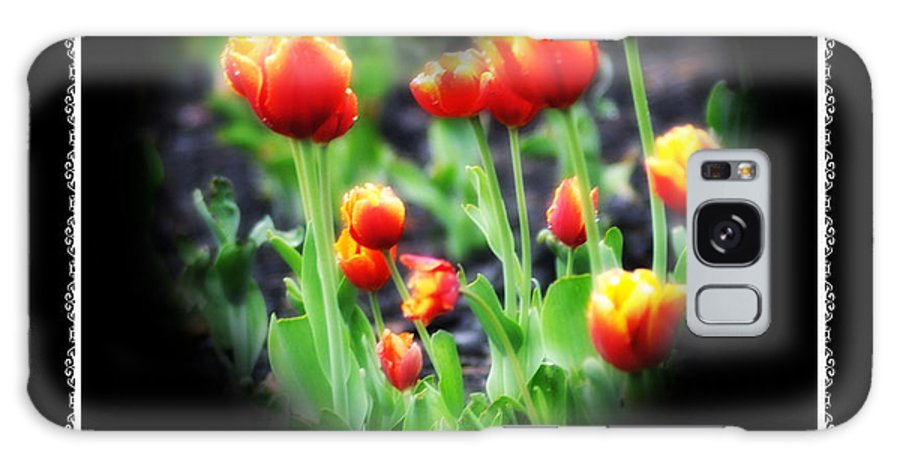 Heart Galaxy S8 Case featuring the photograph I Heart Tulips - Black Background by Bill Cannon