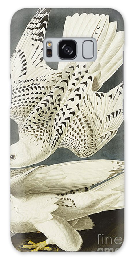Iceland Or Jer Falcon. Gyrfalcon (falco Rustiocolis) From 'the Birds Of America' (aquatint & Engraving With Hand-colouring) By John James Audubon (1785-1851) Galaxy S8 Case featuring the drawing Iceland Or Jer Falcon by John James Audubon