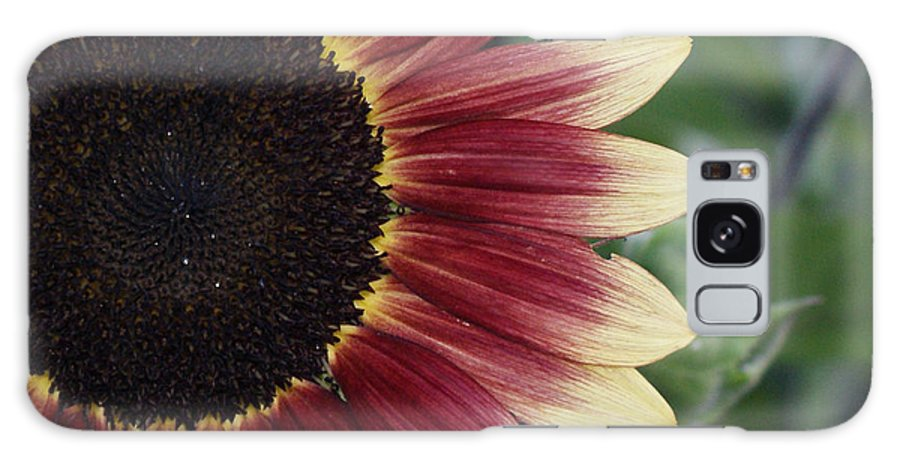 Photography Galaxy Case featuring the photograph If It Makes You Happy by Shelley Jones