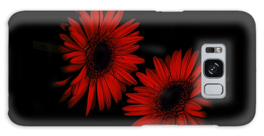 Sunflower Galaxy S8 Case featuring the photograph Illuminated Floral by Beverly Guilliams