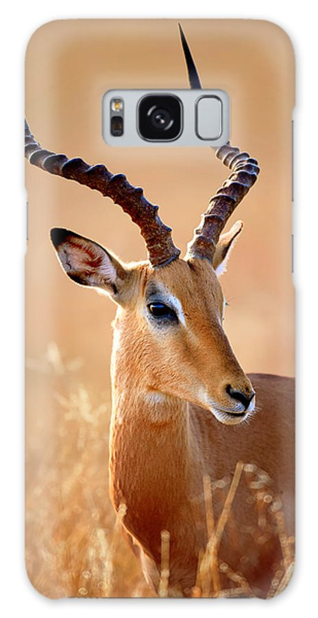 Impala Galaxy S8 Case featuring the photograph Impala Male Portrait by Johan Swanepoel