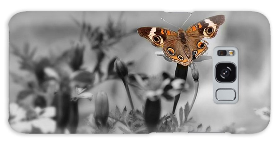 Butterfly Galaxy S8 Case featuring the photograph In A World Of Darkness by Teresa Self