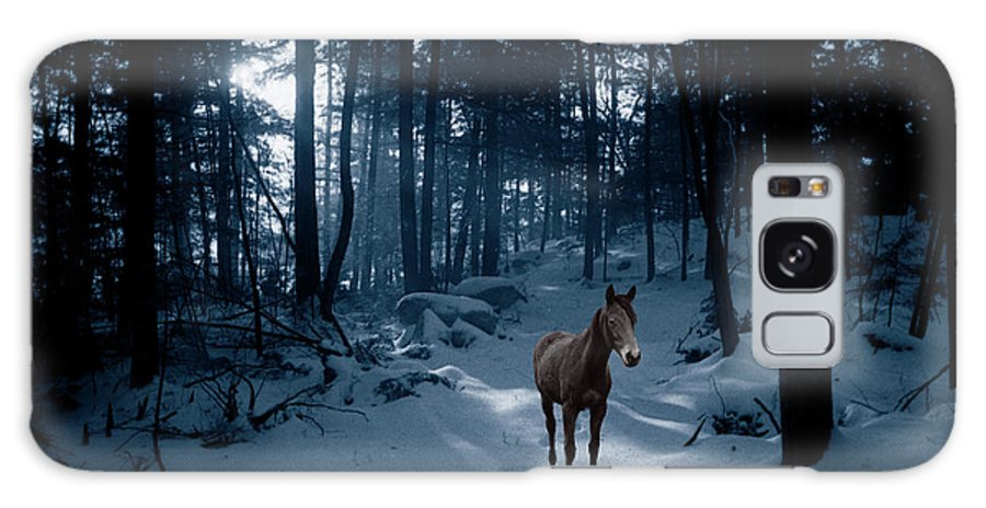 Horse Galaxy S8 Case featuring the photograph In Blue Wood by Wayne King