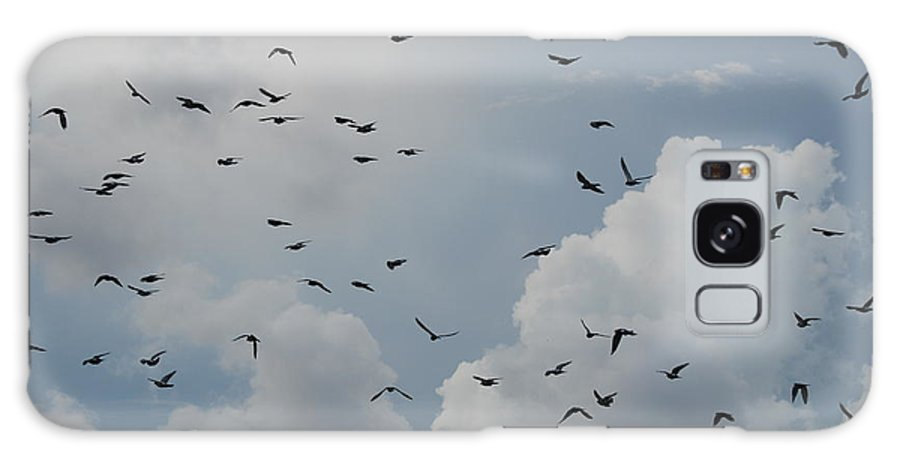 Birds Galaxy Case featuring the photograph In Flight by Rob Hans