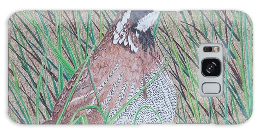 Quail Galaxy Case featuring the painting In The Tall Grass by Anita Putman