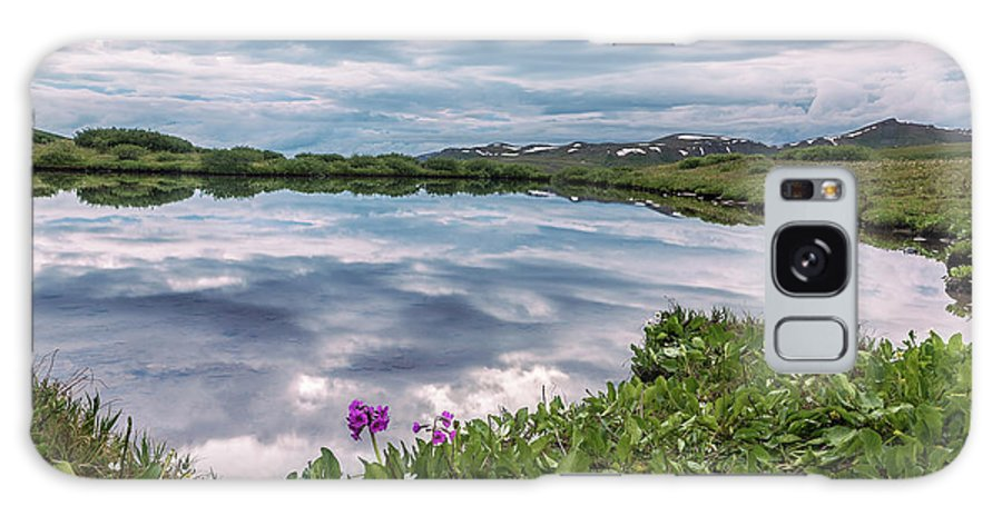 2016 Galaxy S8 Case featuring the photograph Independence Pass Pond by Cary Leppert