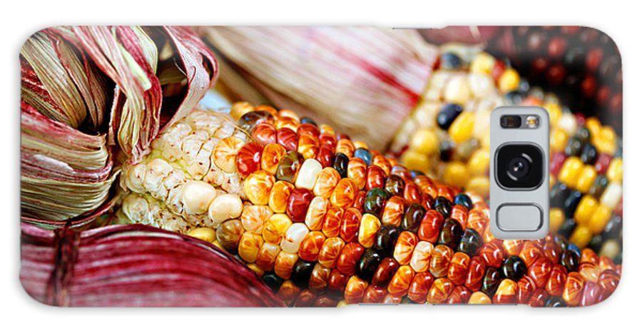 Corn Galaxy Case featuring the photograph Indian Corn by Marilyn Hunt