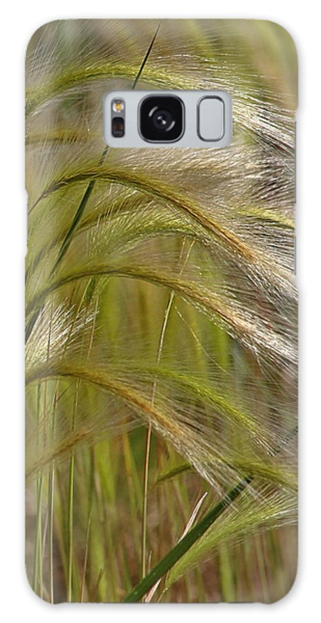 Grass Galaxy S8 Case featuring the photograph Indiangrass Swaying Softly With The Wind by Christine Till