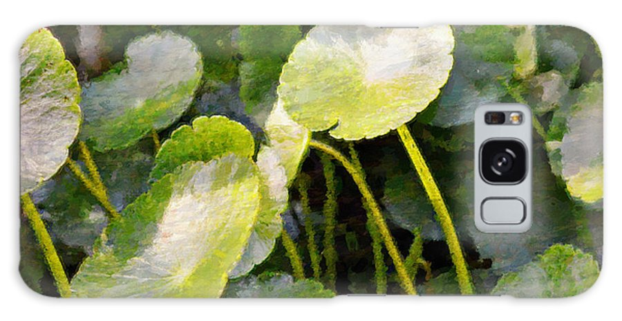 Lil Pads Galaxy Case featuring the photograph Infant Lily Pads by Glenn Mc Carthy