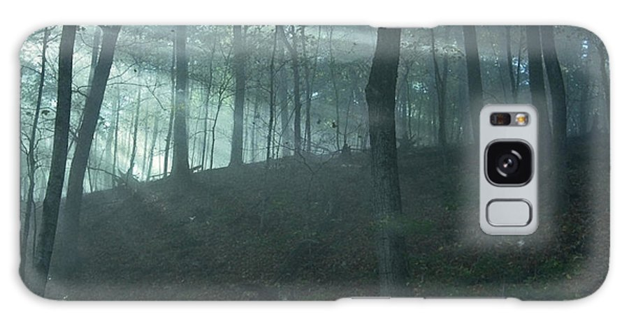 Forest Galaxy S8 Case featuring the photograph Iowa Fog Rays by Sven Brogren