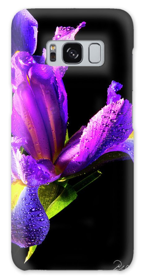 Color Galaxy S8 Case featuring the photograph Iris Bloom One by Frederic A Reinecke