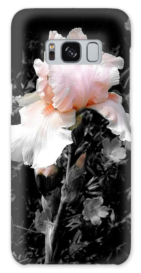 Flower Galaxy Case featuring the photograph Iris Emergance by Steve Karol