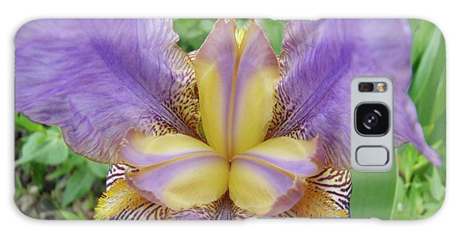 �irises Artwork� Galaxy S8 Case featuring the photograph Iris Flower Lavender Purple Yellow Irises Garden 19 Art Prints Baslee Troutman by Baslee Troutman