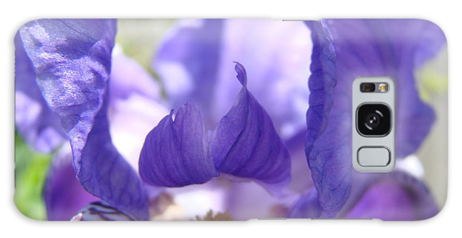 �irises Artwork� Galaxy S8 Case featuring the photograph Iris Flower Purple Irises Floral Botanical Art Prints Macro Close Up by Baslee Troutman