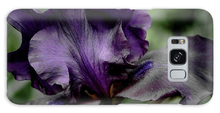 Betsy Lamere Galaxy S8 Case featuring the photograph Iris - Superstition by Betsy LaMere