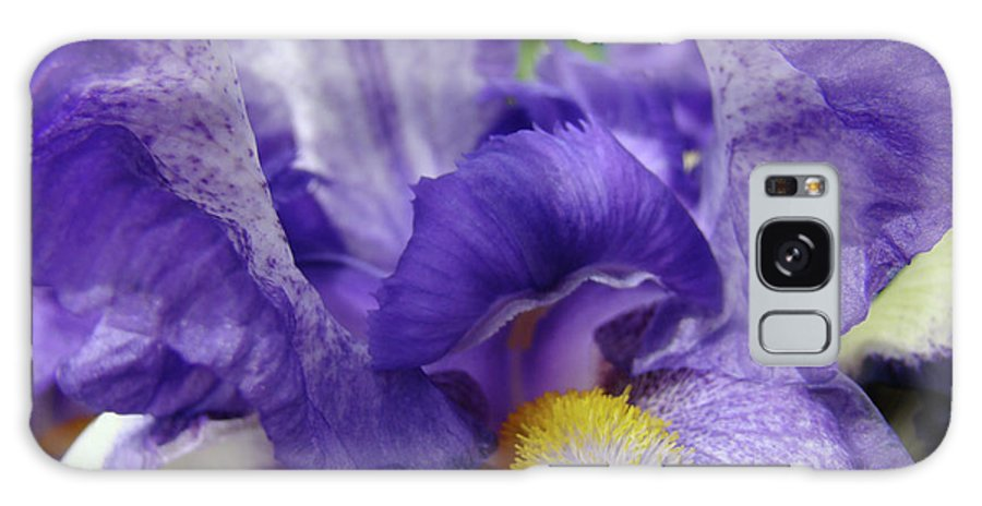Iris Galaxy S8 Case featuring the photograph Irises Artwork Purple Iris Flowers Art Prints Canvas Baslee Troutman by Baslee Troutman