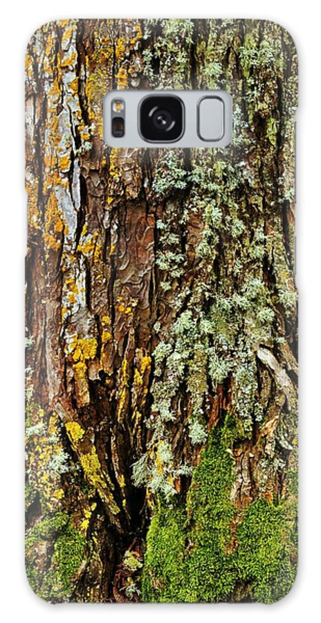 Tree Galaxy S8 Case featuring the photograph Island Moss by JAMART Photography