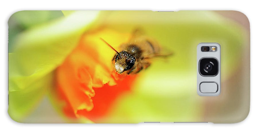 Bee Galaxy S8 Case featuring the photograph It Just Wouldn't Bee Spring Without ... by Lois Bryan