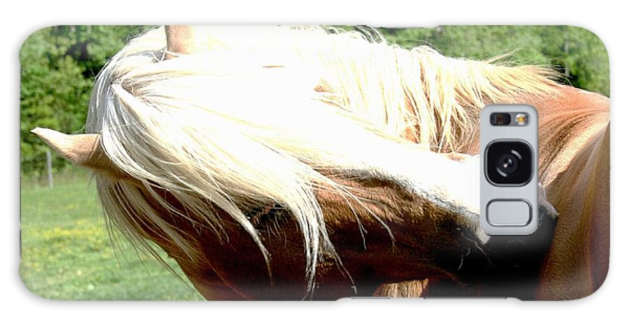Horse Galaxy S8 Case featuring the photograph Itchy Spot by Tina Meador