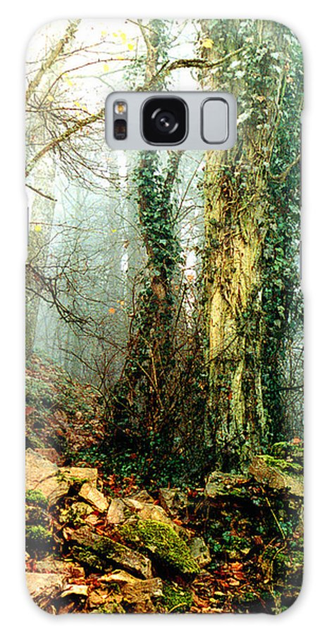 Ivy Galaxy S8 Case featuring the photograph Ivy In The Woods by Nancy Mueller
