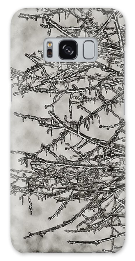 Ice Galaxy S8 Case featuring the photograph Jack Frost by Bill Cannon