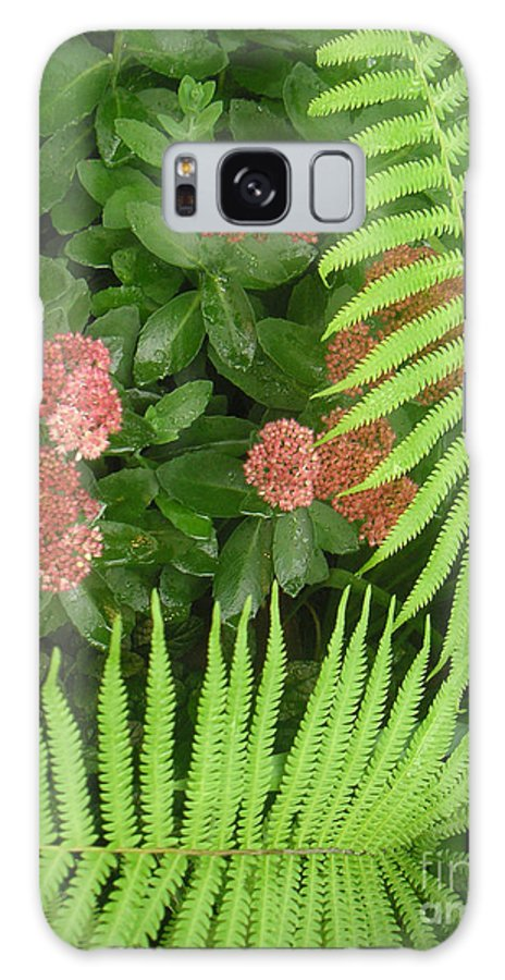 Nature Galaxy S8 Case featuring the photograph Jacqueline's Garden - Camaraderie Of Textures Too by Lucyna A M Green