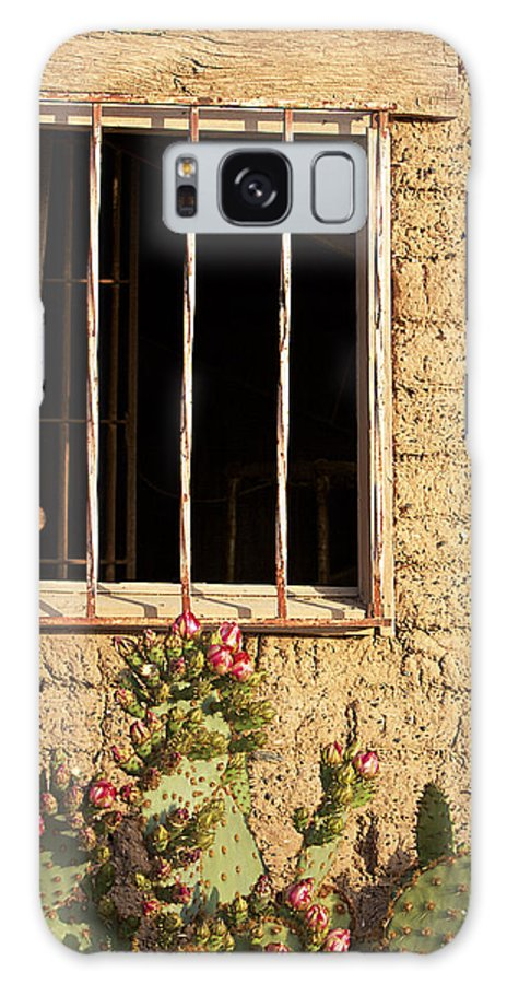 Window Galaxy S8 Case featuring the photograph Jailhouse Window by Phyllis Denton