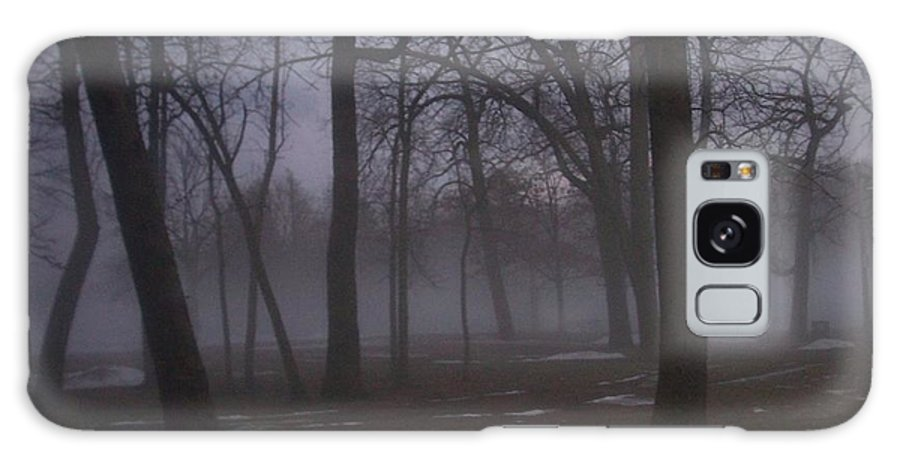 January Galaxy Case featuring the photograph January Fog 2 by Anita Burgermeister