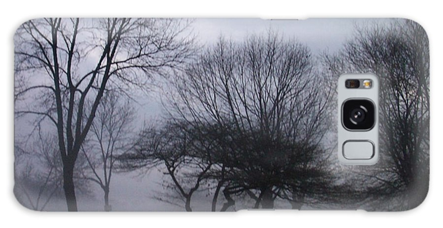 January Galaxy Case featuring the photograph January Fog 6 by Anita Burgermeister