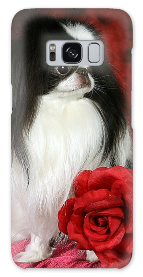 Japanese Chin Galaxy Case featuring the pyrography Japanese Chin and Rose by Kathleen Sepulveda